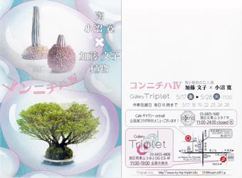 小沼寛・陶 加藤文子・植物 陶と植物の二人展 コンニチハ�