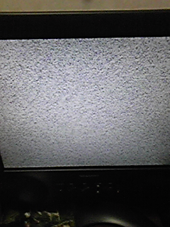 DVC00143.jpg