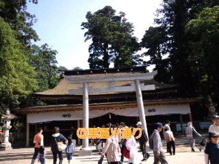 鹿島神宮 拝殿.jpg