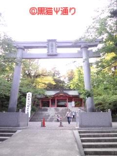 香取神宮 鳥居.jpg