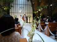メグちゃん結婚式(1)