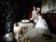 メグちゃん結婚式(3)