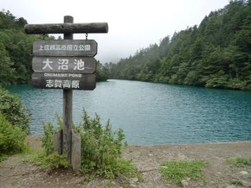 大沼池(1)