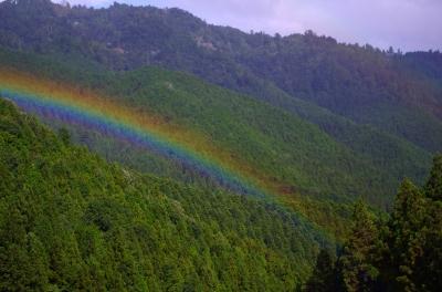 山に架かる虹