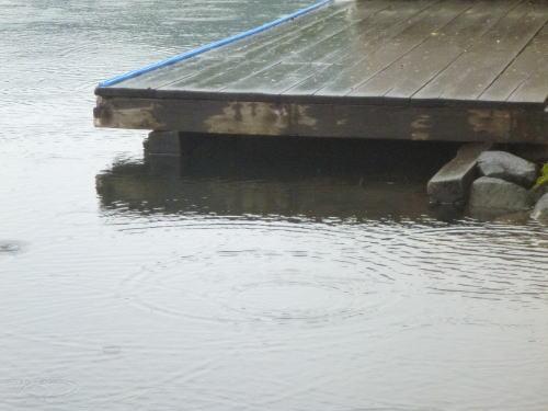 曽原湖の桟橋