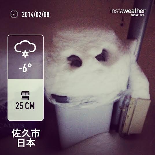 2014.02.08.大雪