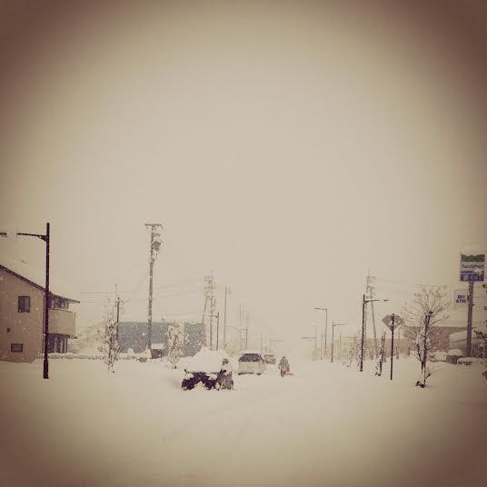 2014.02.15.記録的豪雪