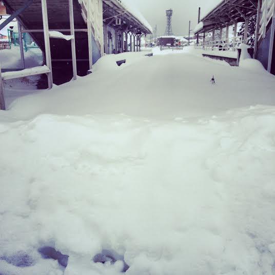 2014.02.15.記録的豪雪-3
