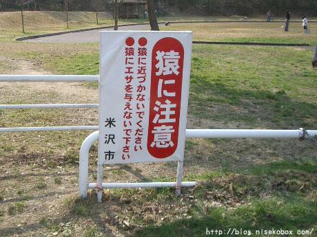 大森山森林公園2