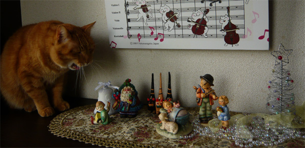 猫 写真 クリスマス