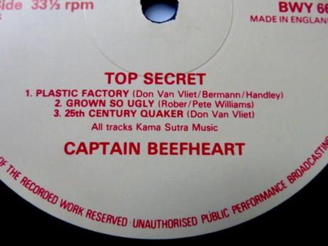 beefheart (5).JPG