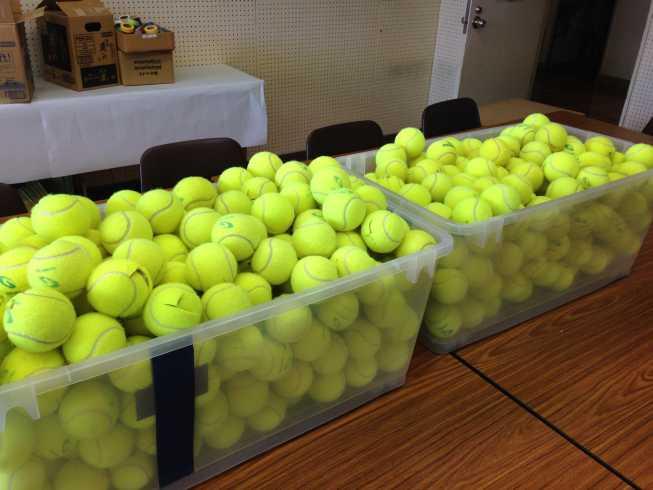 テニスボールをカット3