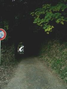 どんぐり トンネル