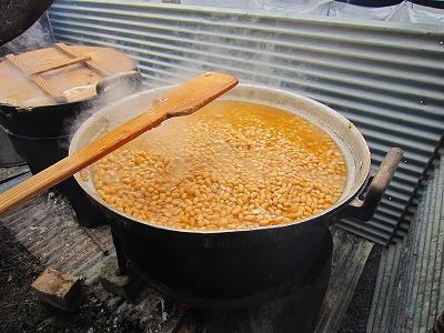 美味しそうな大豆