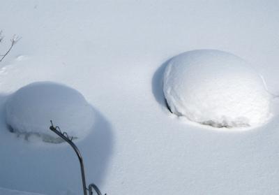 マシュマロ雪