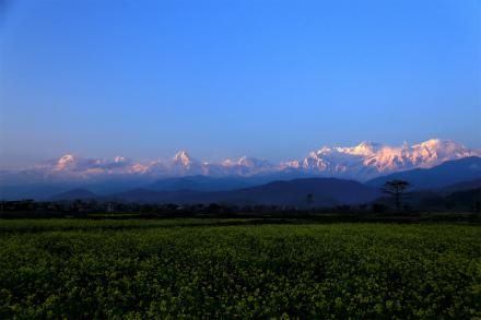 アンナプルナヒマール 夕焼け ポカラ Pokhara
