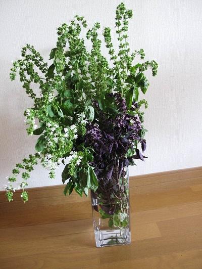 バジルの花束