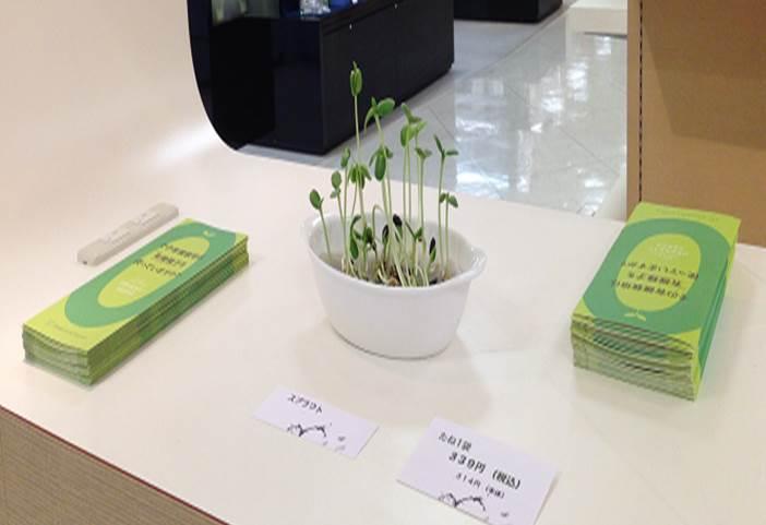 有機種子東急百貨店展示会