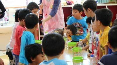 スプラウトを育てる食育プロジェクト1