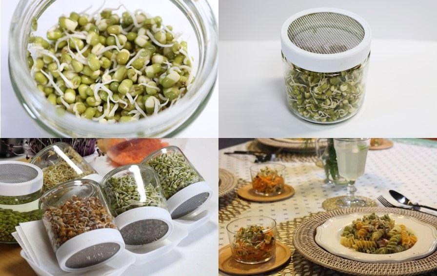 発芽豆栽培の瓶