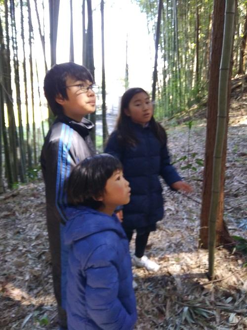 竹林と子供たち