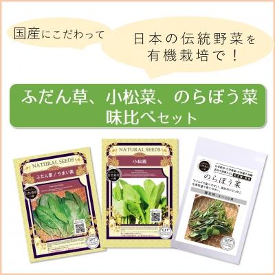 のらぼう菜小松菜など伝統野菜の種の通販