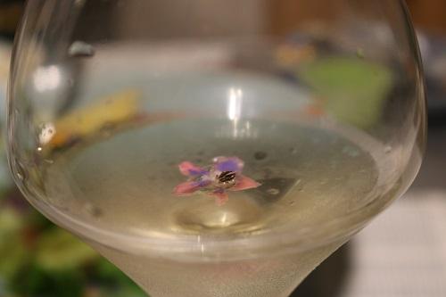 ボリジの花の白ワイン