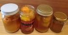 梅の蜂蜜漬け