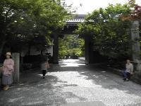 紅葉で有名な永観堂です。