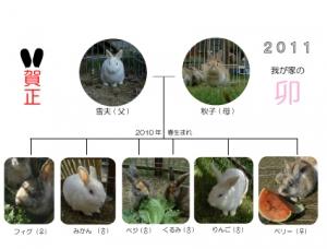 ウサギ年 年賀状 2011