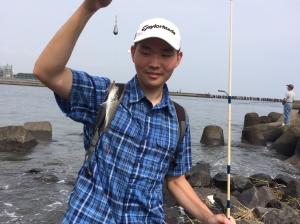 スズキの幼魚も釣れたよ