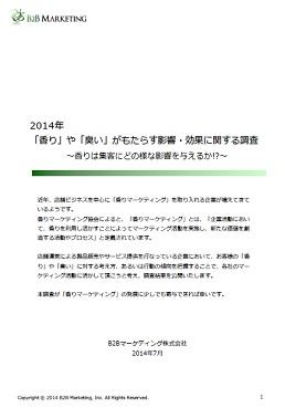 B2BM_report_201407
