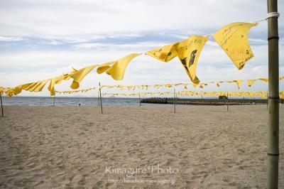 双海シーサイド 黄色いハンカチ