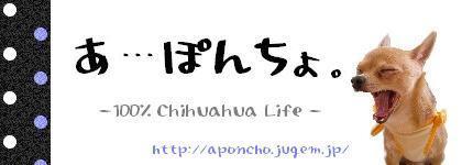 http://aponcho.jugem.jp/