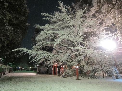 正月神社2.jpg
