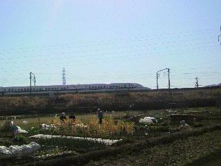 s-2011031310090000.jpg
