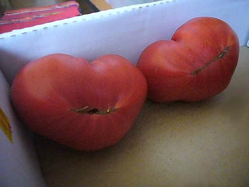ハート型トマト