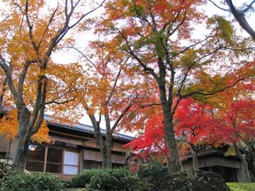 箱根美術館 2