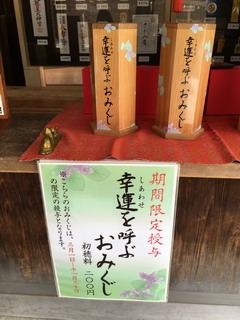 寒川神社の幸運を呼ぶおみくじ