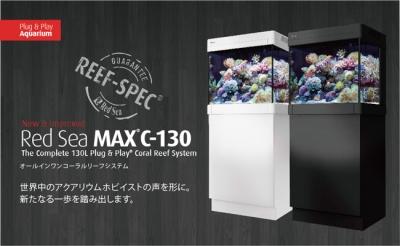 Red Sea MAX C-130 最終便!!