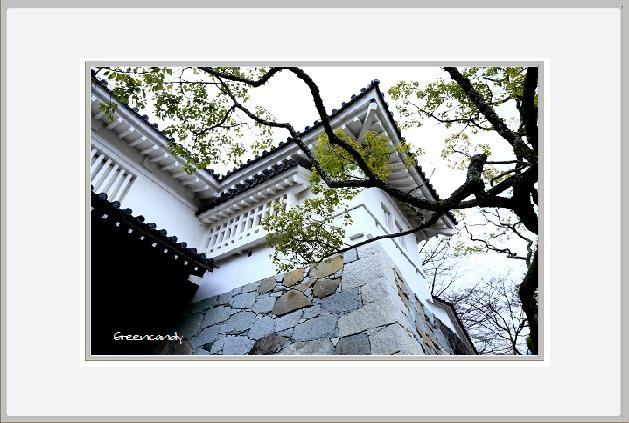 中霞城ー7.jpg