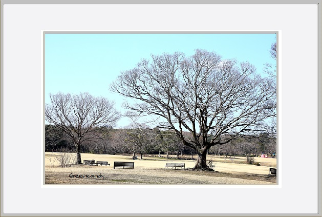 冬景色ー2.jpg