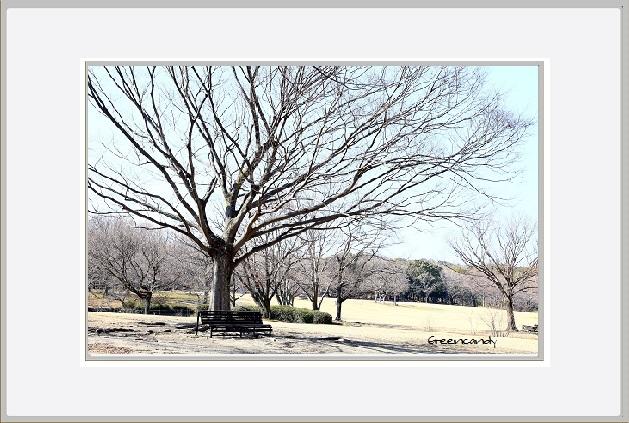 冬景色ー3.jpg