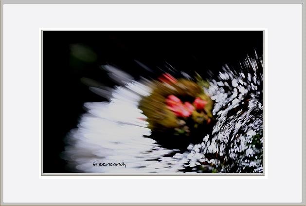 水と椿ー2.jpg