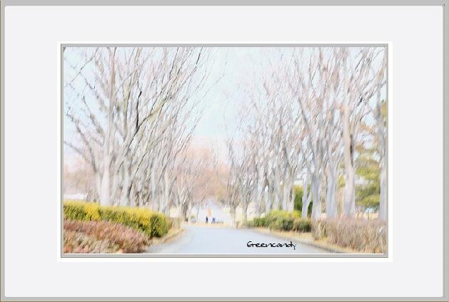 寒い冬景色ー1.jpg