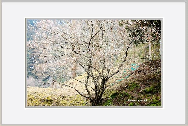 室生山上公園-23.jpg