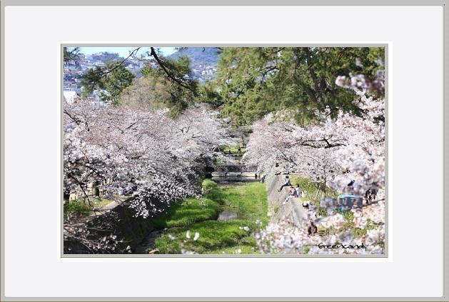 夙川公園ー4.jpg