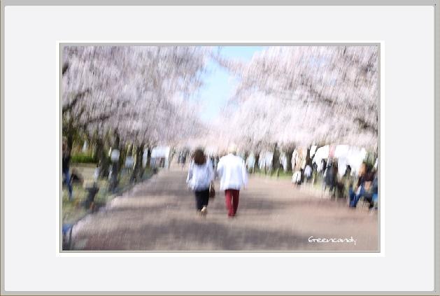 万博公園ー11.jpg