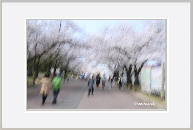 万博公園ー13.jpg