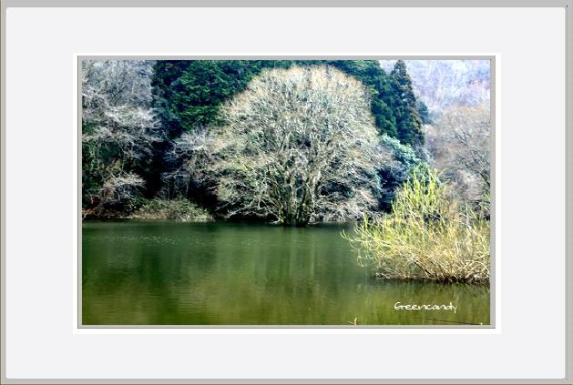 室生湖-3.jpg